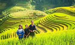 Hanoi - Laocai - Sapa Tours